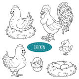 Insieme degli animali da allevamento e degli oggetti, pollo della famiglia di vettore royalty illustrazione gratis