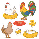 Insieme degli animali da allevamento e degli oggetti, pollo della famiglia di vettore Fotografia Stock