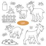 Insieme degli animali da allevamento e degli oggetti svegli, capre della famiglia di vettore illustrazione vettoriale