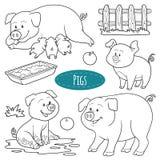 Insieme degli animali da allevamento e degli oggetti svegli, maiali della famiglia di vettore Fotografia Stock Libera da Diritti