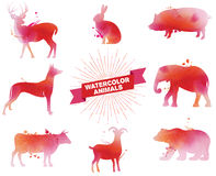 Insieme degli animali dell'acquerello Immagine Stock Libera da Diritti