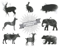 Insieme degli animali dell'acquerello Fotografia Stock