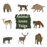 Insieme degli animali della foresta Fotografia Stock