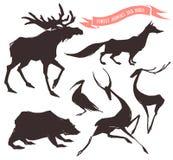 Insieme degli animali disegnati a mano Fotografia Stock