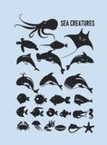 Insieme degli animali marini Fotografia Stock Libera da Diritti