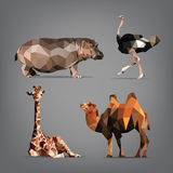 Insieme degli animali selvatici nello stile degli origami Illustrazione di vettore Fotografia Stock Libera da Diritti