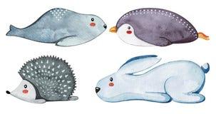 Insieme degli animali svegli differenti Animali pigri watercolor illustrazione vettoriale
