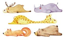 Insieme degli animali svegli differenti Animali pigri watercolor royalty illustrazione gratis
