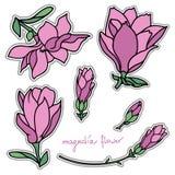 Insieme degli autoadesivi della magnolia Fotografie Stock Libere da Diritti