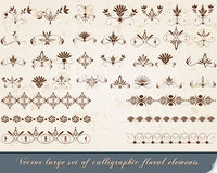 Insieme degli elementi calligrafici di disegno Immagini Stock
