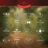Insieme degli elementi d'annata di stile per le etichette e dei distintivi per vino Fotografia Stock Libera da Diritti