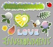 Insieme degli elementi dell'ambiente Ape e coccinella del trifoglio dei fiori illustrazione vettoriale
