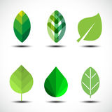 Insieme degli elementi di progettazione delle foglie verdi Fotografia Stock Libera da Diritti