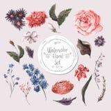Insieme degli elementi di progettazione floreale dell'acquerello rose illustrazione vettoriale