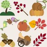 Insieme degli elementi differenti di progettazione di vettore di autunno Fotografia Stock