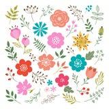 Insieme degli elementi floreali Fotografia Stock Libera da Diritti