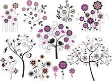 Insieme degli elementi floreali di disegno astratto Fotografia Stock