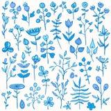 Insieme degli elementi floreali disegnati a mano Fotografia Stock