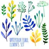 Insieme degli elementi floreali disegnati a mano dell'acquerello Immagine Stock Libera da Diritti