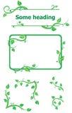 Insieme degli elementi freschi della pianta per il disegno Fotografia Stock