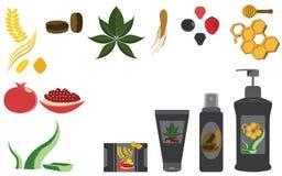Insieme degli ingredienti popolari royalty illustrazione gratis