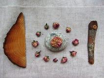 Insieme degli oggetti della natura su fondo di tela Fotografia Stock