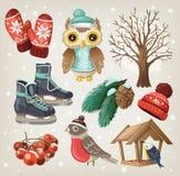 Insieme degli oggetti e degli elementi di inverno Fotografia Stock