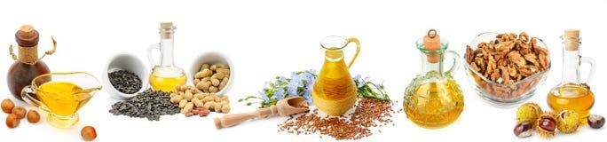 Insieme degli oli vegetali, dei dadi e dei semi isolati sul backgrou bianco fotografia stock libera da diritti