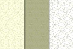 Insieme degli ornamenti geometrici Modelli senza cuciture bianchi verde oliva e di verde Fotografie Stock