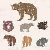 Insieme degli orsi differenti illustrazione vettoriale