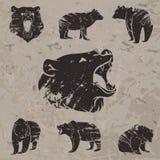 Insieme degli orsi differenti 3 illustrazione di stock