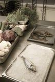 Insieme degli ortaggi freschi, delle erbe e del pesce su una tavola del metallo di resto Fotografia Stock