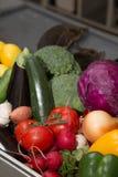 Insieme degli ortaggi freschi e delle erbe su una tavola del metallo del ristorante Immagini Stock Libere da Diritti
