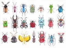 Insieme degli scarabei dell'acquerello Fotografie Stock Libere da Diritti