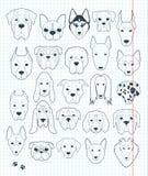 Insieme degli schizzi 24 razze differenti dei cani fatte a mano Cane capo illustrazione di stock