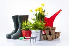 Insieme degli strumenti di giardino e dei fiori del giardino Fotografie Stock