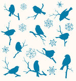 Insieme degli uccelli Immagini Stock Libere da Diritti