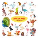 Insieme degli uccelli del fumetto Fotografie Stock Libere da Diritti