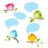 Insieme degli uccelli svegli Fotografia Stock Libera da Diritti