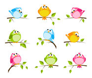Insieme degli uccelli svegli Immagini Stock