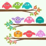 Insieme degli uccelli svegli con differenti emozioni sul tre di fioritura del ramo Immagini Stock Libere da Diritti