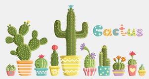 Insieme dei cactus Fotografia Stock Libera da Diritti
