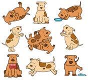 Insieme dei cani del fumetto illustrazione vettoriale
