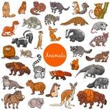 Insieme dei caratteri animali dei mammiferi selvatici grande illustrazione vettoriale