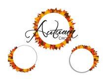 Insieme dei cerchi Foglie di autunno intorno ai rettangoli in bianco Fotografia Stock Libera da Diritti