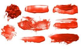 Insieme dei colpi acrilici della spazzola di colore astratto Immagini Stock