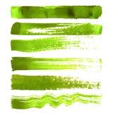 Insieme dei colpi verdi della spazzola Immagini Stock