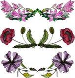 Insieme dei confini floreali dell'acquerello Immagini Stock Libere da Diritti