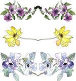 Insieme dei confini floreali dell'acquerello Fotografia Stock