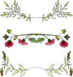 Insieme dei confini floreali dell'acquerello Immagine Stock